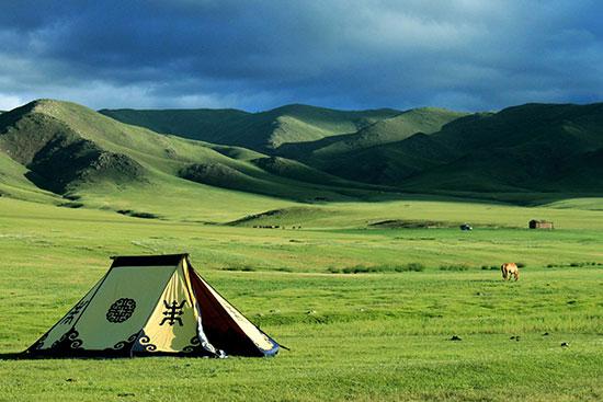 field-mongolia-3